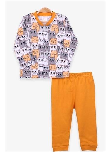 Breeze Kız Bebek Pijama Takımı Kedili Karışık Renk  Renkli